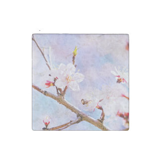 Japanese Cherry - Sakura In Bloom Stone Magnet