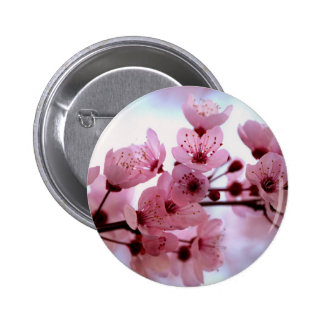 Japanese Cherry Tree Blossoms 6 Cm Round Badge