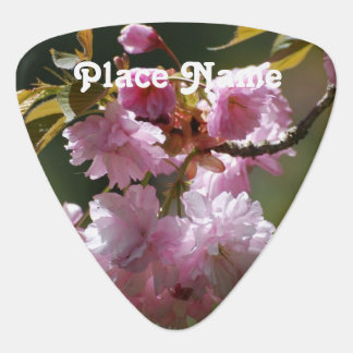 Japanese Cherry Tree Plectrum