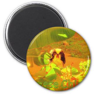 Japanese Chin 6 Cm Round Magnet