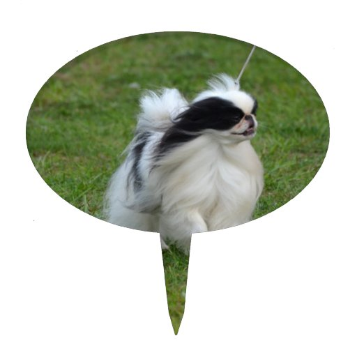 Japanese Chin Cake Toppers