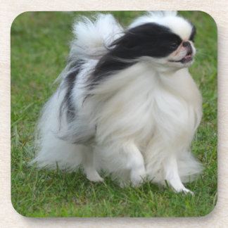 Japanese Chin Drink Coasters