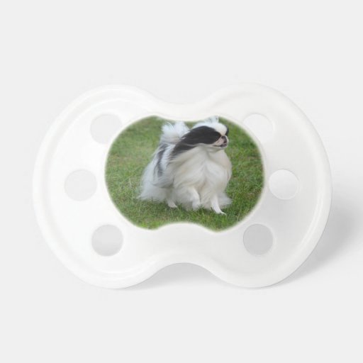 Japanese Chin Baby Pacifiers