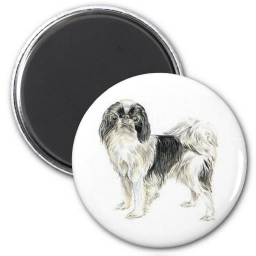 Japanese Chin Refrigerator Magnet