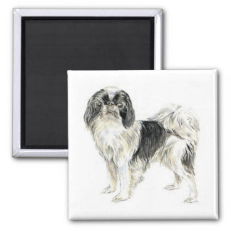 Japanese Chin Square Magnet
