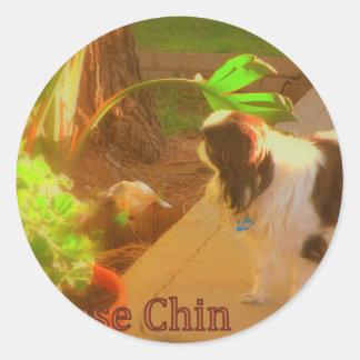Japanese Chin Round Stickers