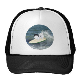 Japanese Chin Surfing Hats