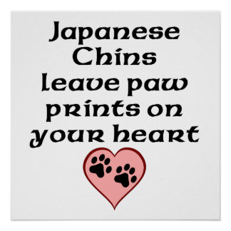 Japanese Chins Leave Paw Prints On Your Heart Poster