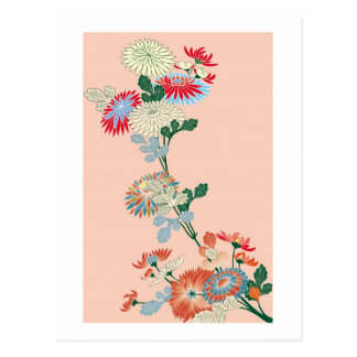 Japanese Chrysanthemum Postcard