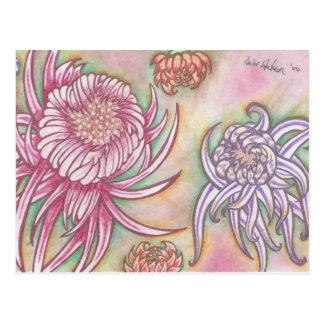 Japanese Chrysanthemums Postcard
