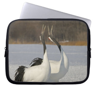 Japanese Cranes dancing on snow Laptop Sleeve