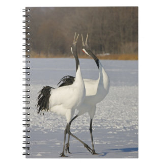 Japanese Cranes dancing on snow Spiral Notebook