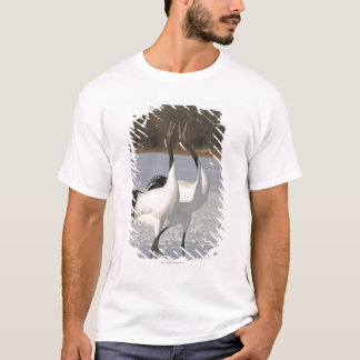 Japanese Cranes dancing on snow T-Shirt
