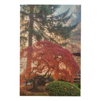 Japanese Gardens In Autumn In Portland, Oregon 6 Wood Canvas