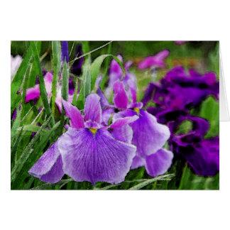japanese iris greeting card