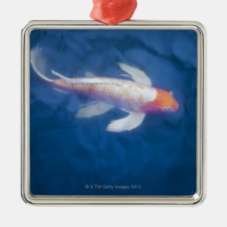 Japanese koi fish in pond, high angle view christmas ornament