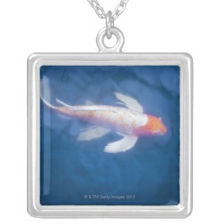 Japanese koi fish in pond, high angle view silver plated necklace
