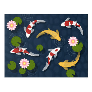 Japanese Koi Fish Pond Postcard