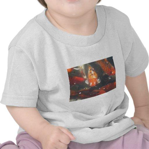 Japanese Koi Fish T-shirts