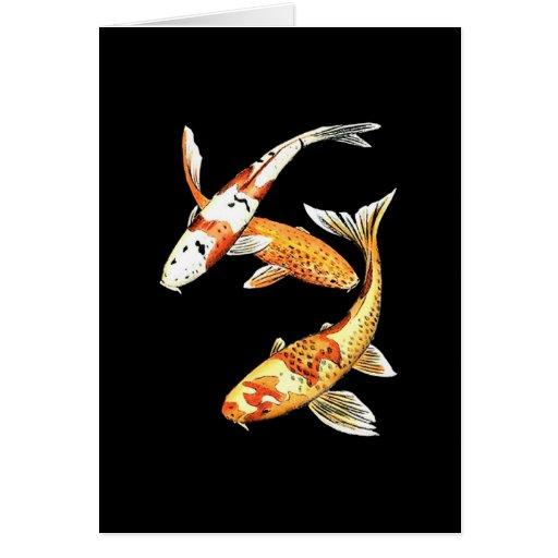 Japanese koi goldfish on black zazzle for Japanese koi company