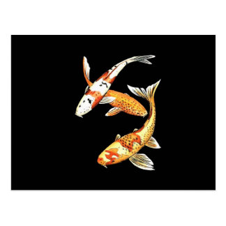 Japanese Koi Goldfish on Black Postcard