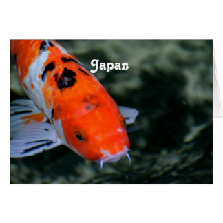 Japanese Koi Greeting Card