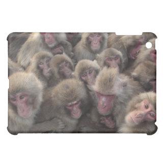 Japanese macaque (Macaca fuscata) huddled iPad Mini Covers