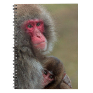 Japanese Macaque Monkeys Notebook