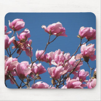 Japanese Magnolia Blooms Mouse Pad