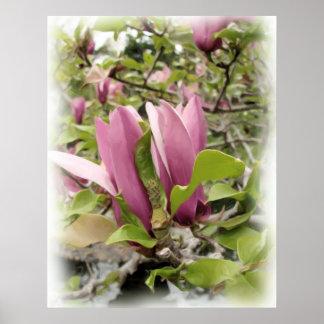 Japanese Magnolias - Digital Watercolor Print