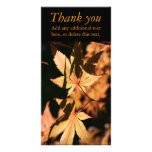 Japanese Maple (1) - Thank You - Autumn Colours Customised Photo Card
