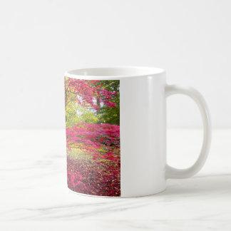 Japanese maple (Acer palmatum) Coffee Mug