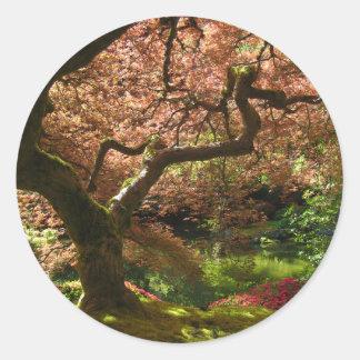 Japanese Maple Acer Palmatum Portland Garden Round Sticker