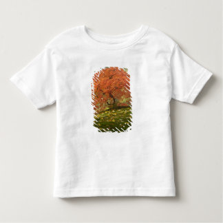 Japanese maple in fall color 3 toddler T-Shirt