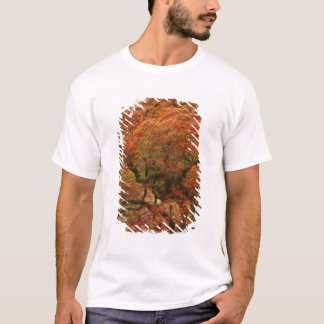 Japanese maple in fall color 4 T-Shirt