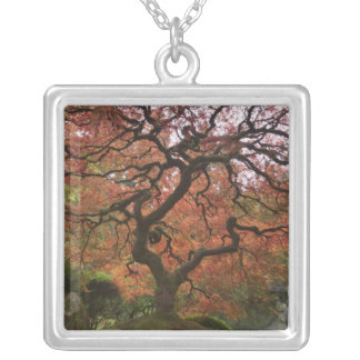 Japanese maple in fall color 5 silver plated necklace
