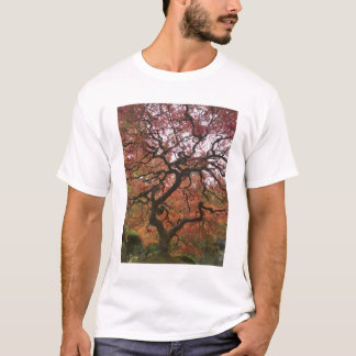 Japanese maple in fall color 5 T-Shirt