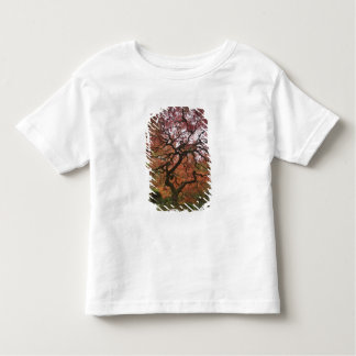Japanese maple in fall color 5 toddler T-Shirt