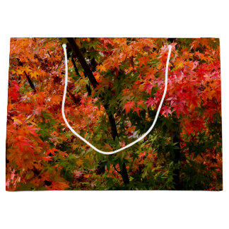Japanese Maple in Fall Large Gift Bag