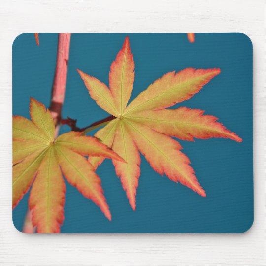 Japanese Maple Leaf Sango Kaku Mousepad