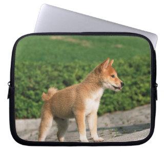 Japanese Midget Shiba 2 Laptop Sleeve