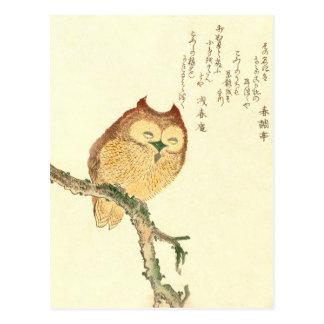 JAPANESE OWL ON A MAGNOLIA BRANCH Postcard
