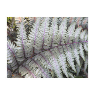 Japanese Painted Fern Floral Canvas Prints