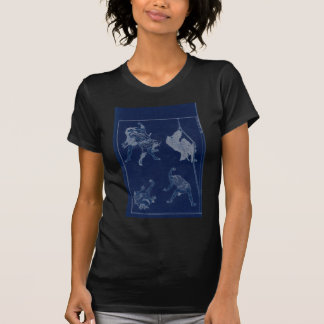 Japanese Painting of woman and Mt. Fuji c. 1800's T-Shirt