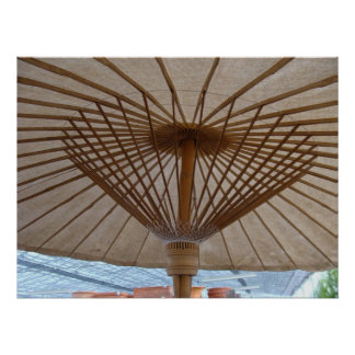 Japanese Paper Umbrella Print