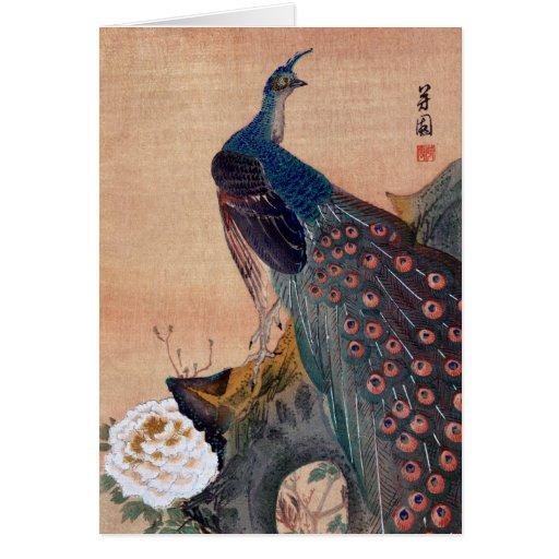 Japanese Peacock no.1 Greeting Card