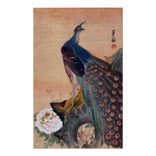 Japanese Peacock no.1 Poster