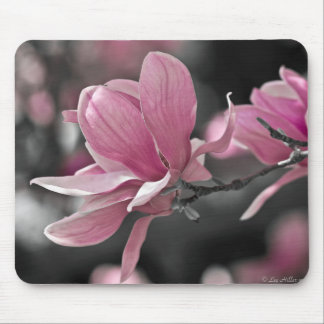 Japanese Pink Saucer Magnolia Mouse Pad