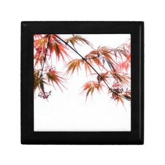 Japanese Red Maple Art Photography Keepsake Boxes