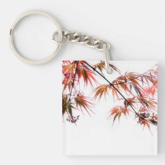 Japanese Red Maple Art Photography Key Ring